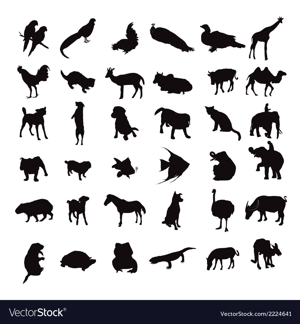Silhouette set of animals vector | Price: 1 Credit (USD $1)