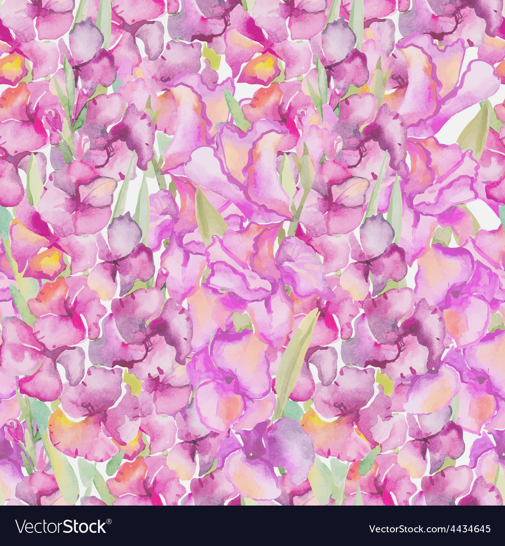 Gladiolus floral pattern vector | Price: 1 Credit (USD $1)