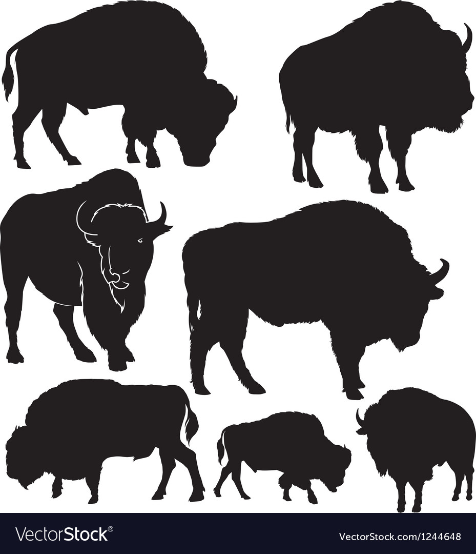 Silhouettes buffalo vector | Price: 1 Credit (USD $1)