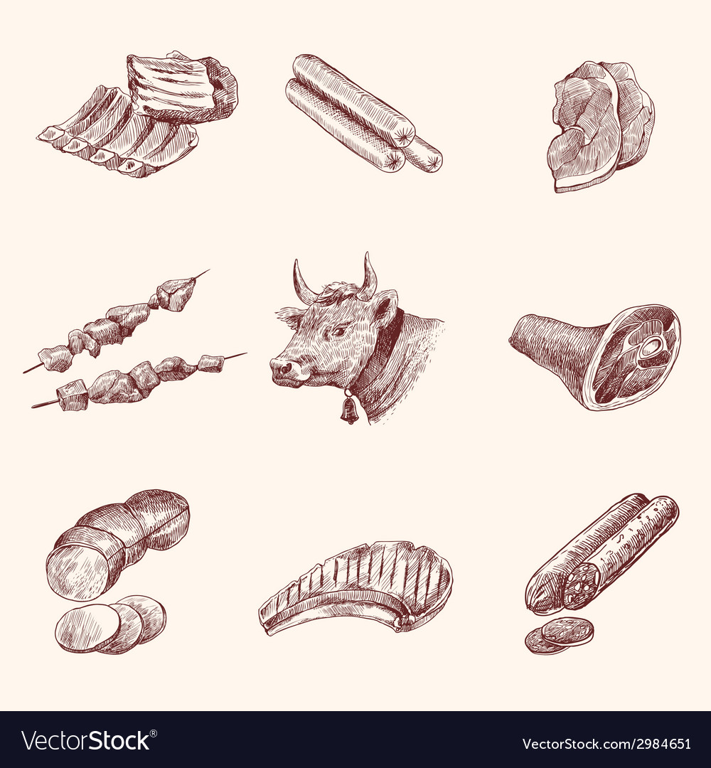 Sketch meat icons vector | Price: 1 Credit (USD $1)
