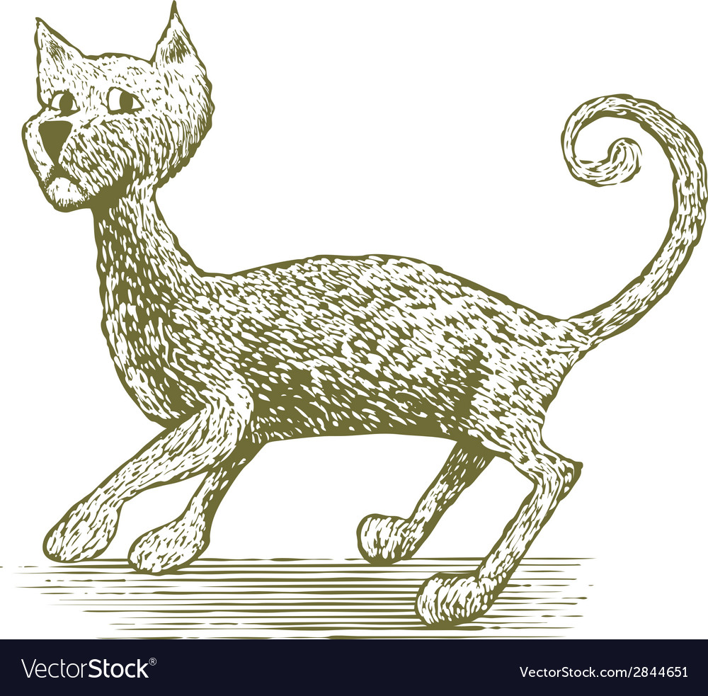 Woodcut cat drawing vector | Price: 1 Credit (USD $1)