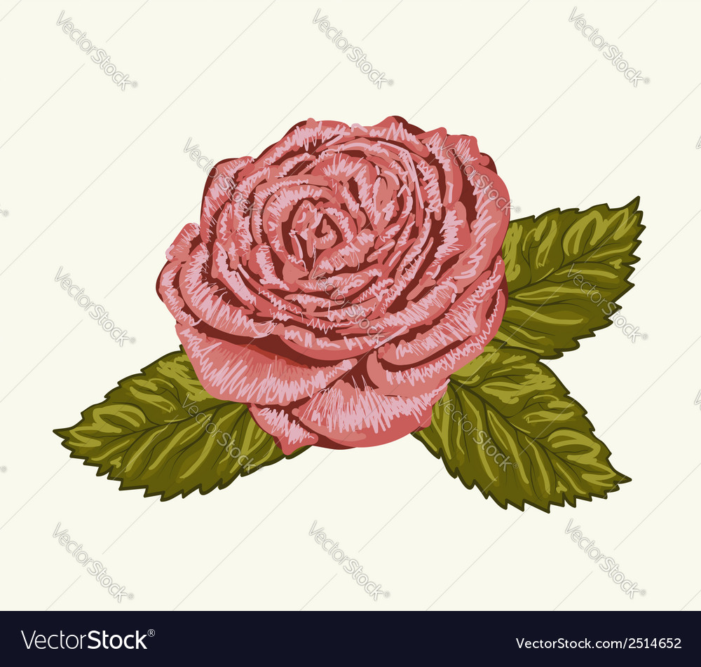 Rose bud with leaves painted in watercolor style vector | Price: 1 Credit (USD $1)