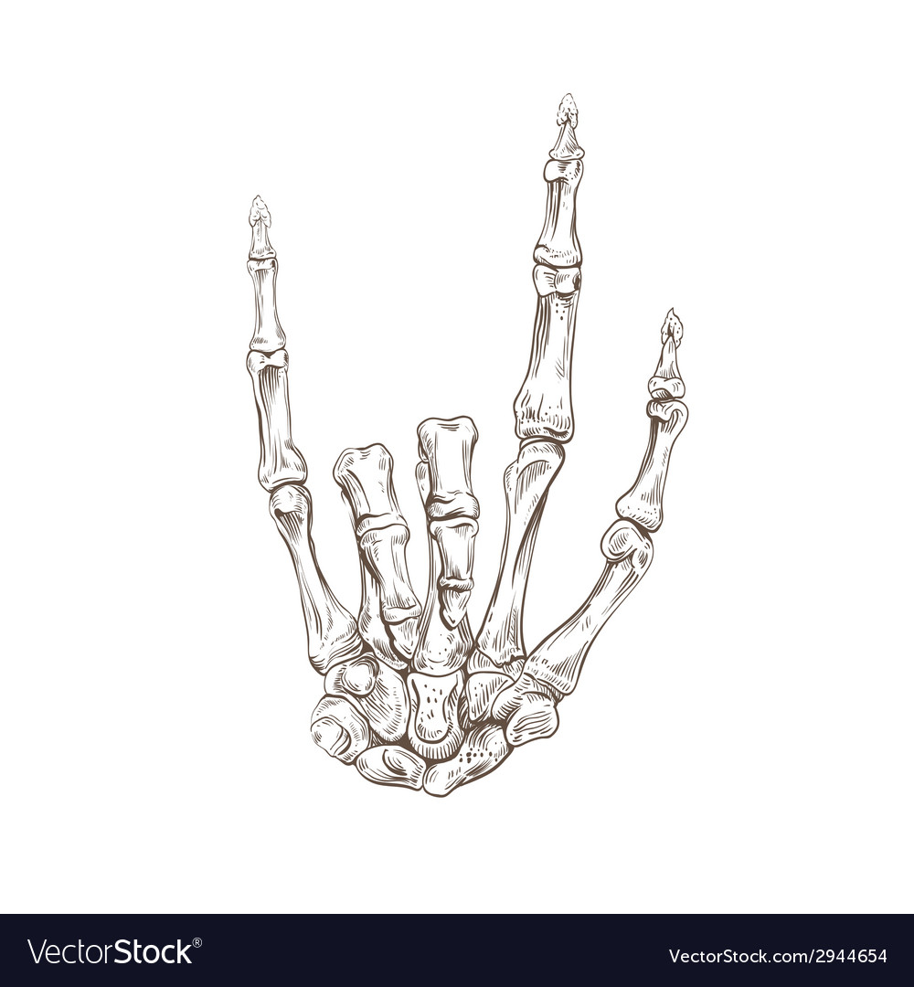 Skeleton hand heavy metal vector | Price: 1 Credit (USD $1)