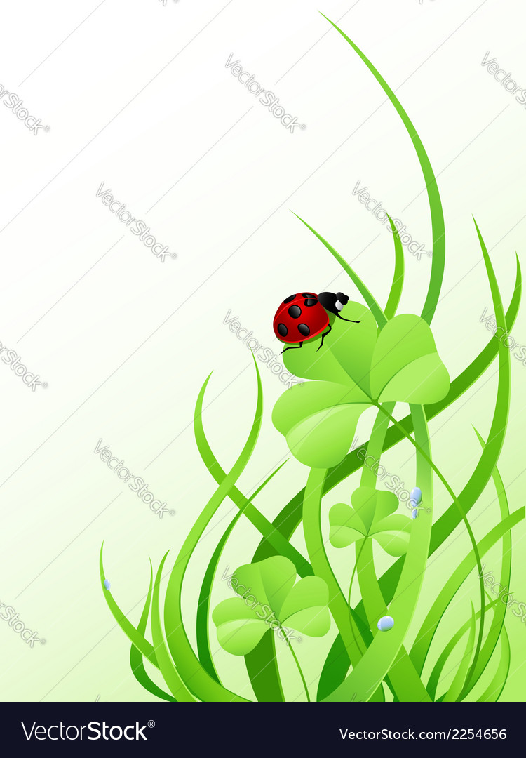 Green grass and ladybird vector | Price: 1 Credit (USD $1)