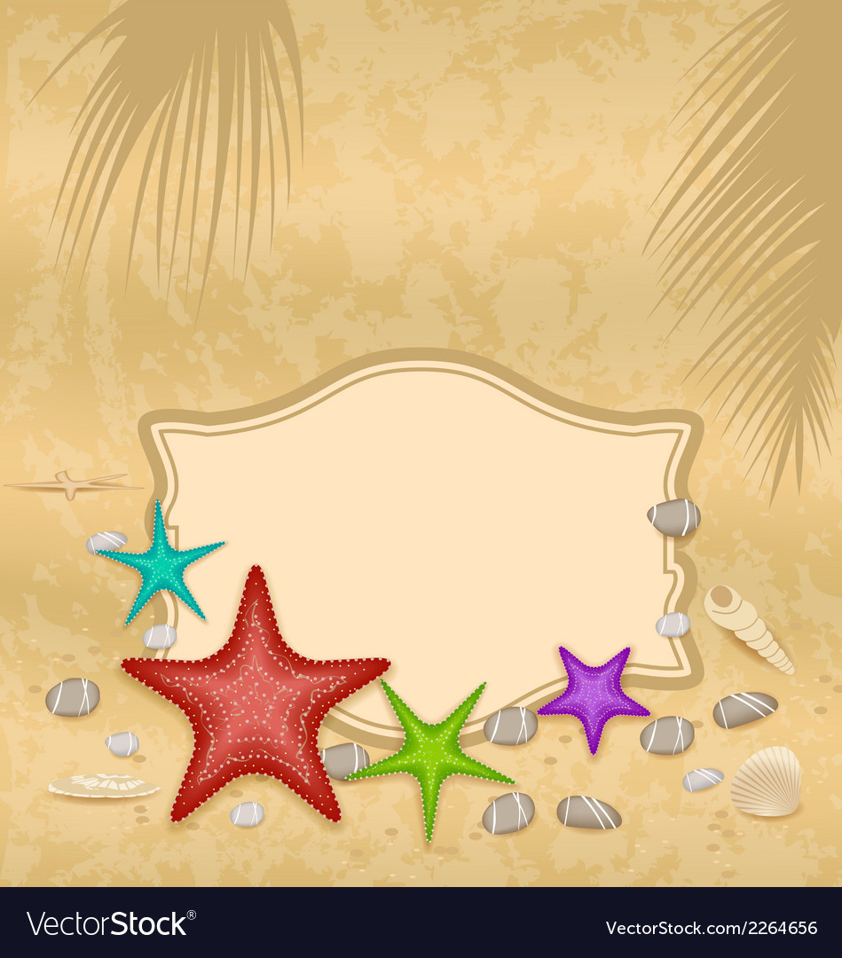 Vintage greeting card with shells and starfishes vector | Price: 1 Credit (USD $1)