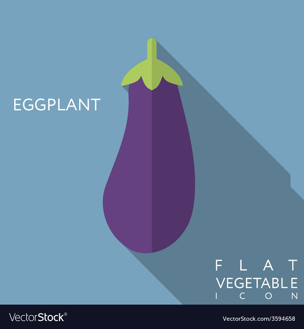 Eggplant flat icon with long shadow vector | Price: 1 Credit (USD $1)