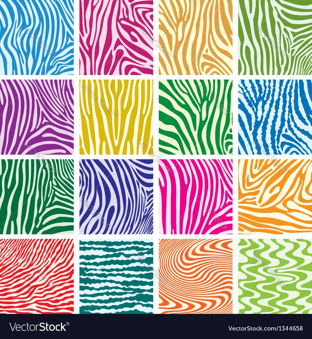 Skin textures of zebra vector | Price: 1 Credit (USD $1)