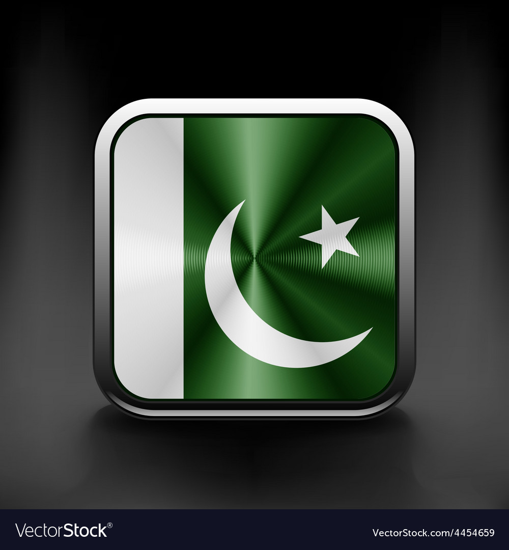 Pakistan national flag national travel icon vector | Price: 1 Credit (USD $1)