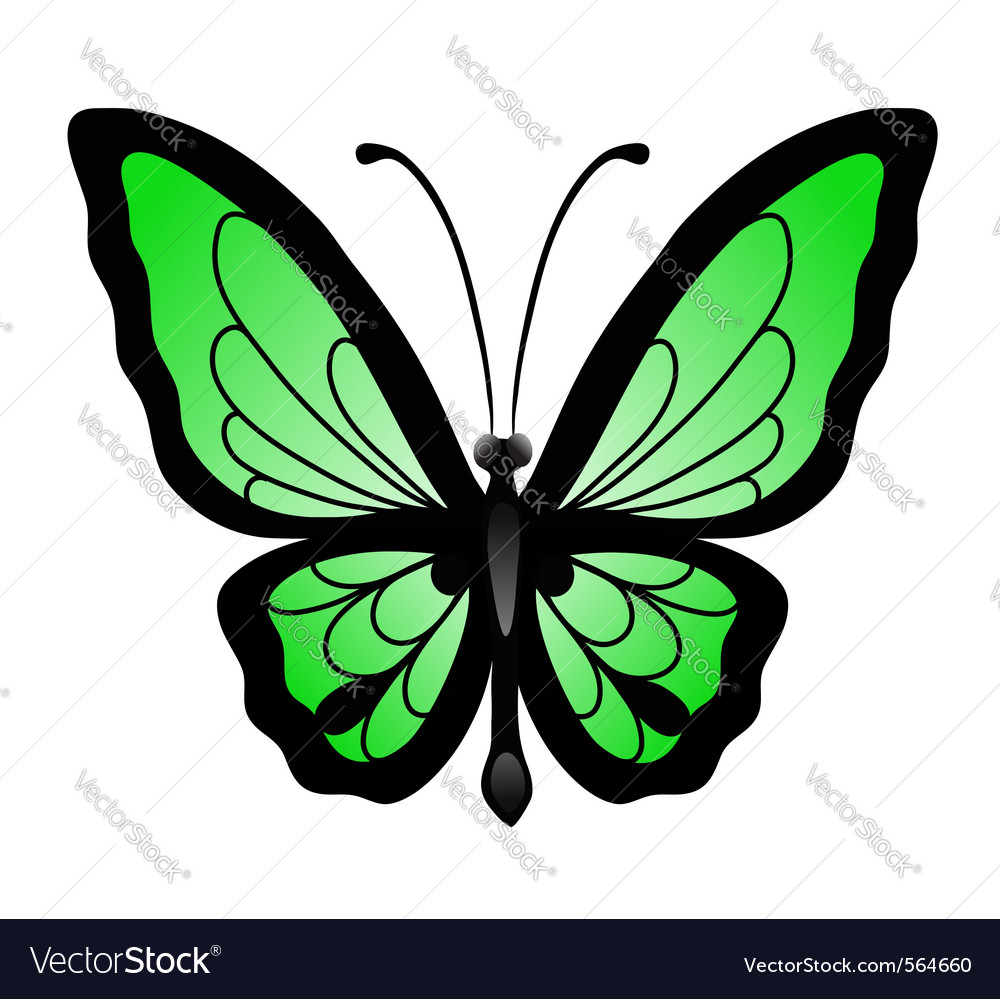 Abstract big green butterfl vector | Price: 1 Credit (USD $1)