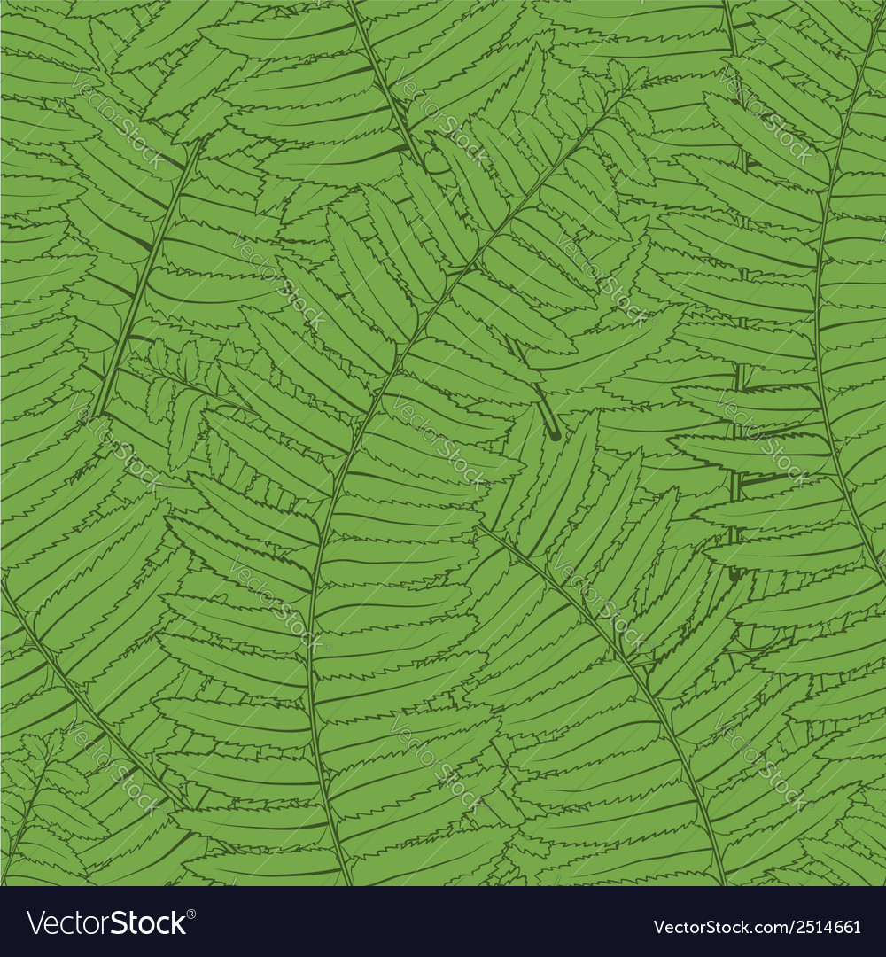 Seamless background with fern leaves vector | Price: 1 Credit (USD $1)