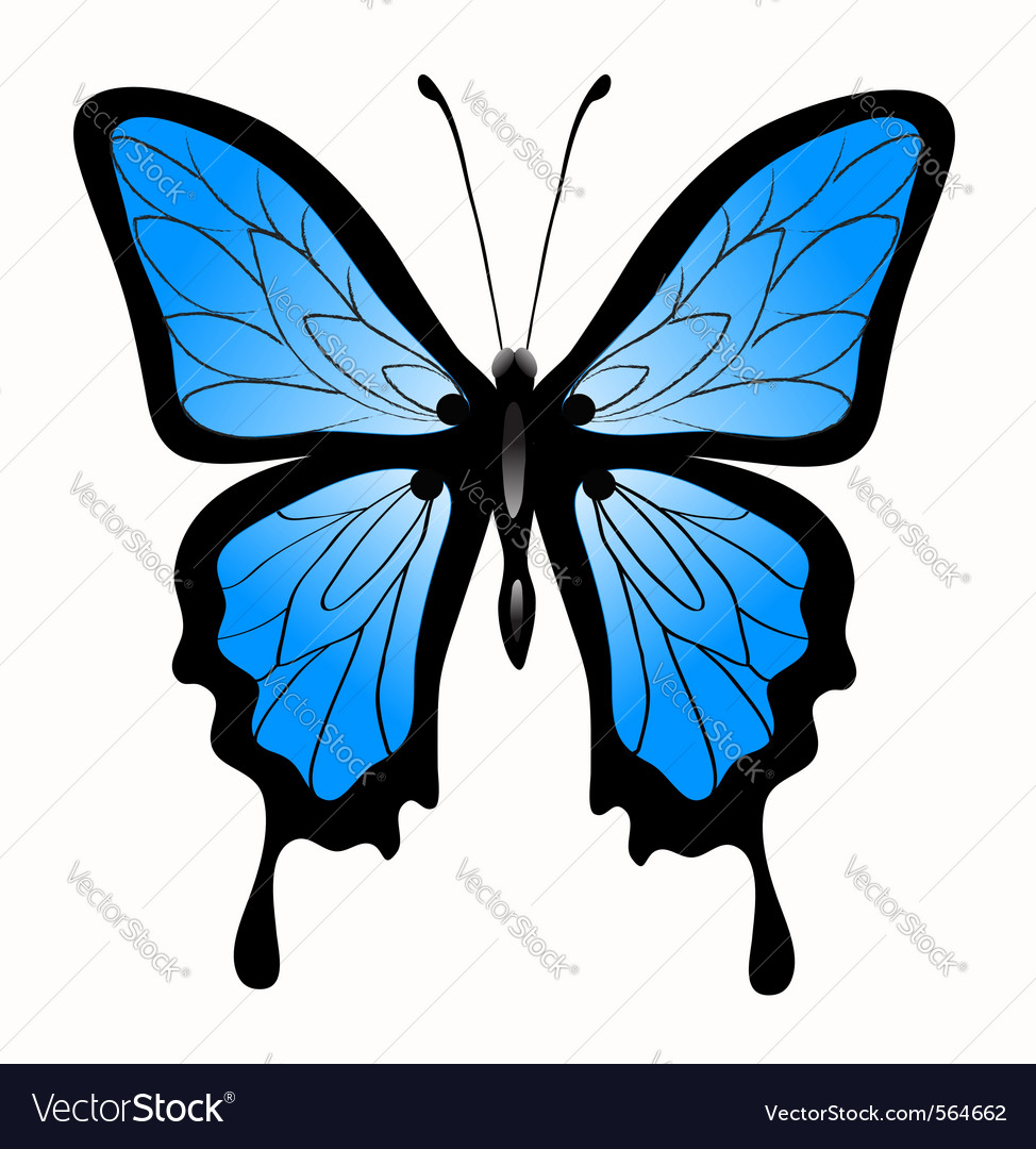 Abstract big blue butterfl vector | Price: 1 Credit (USD $1)