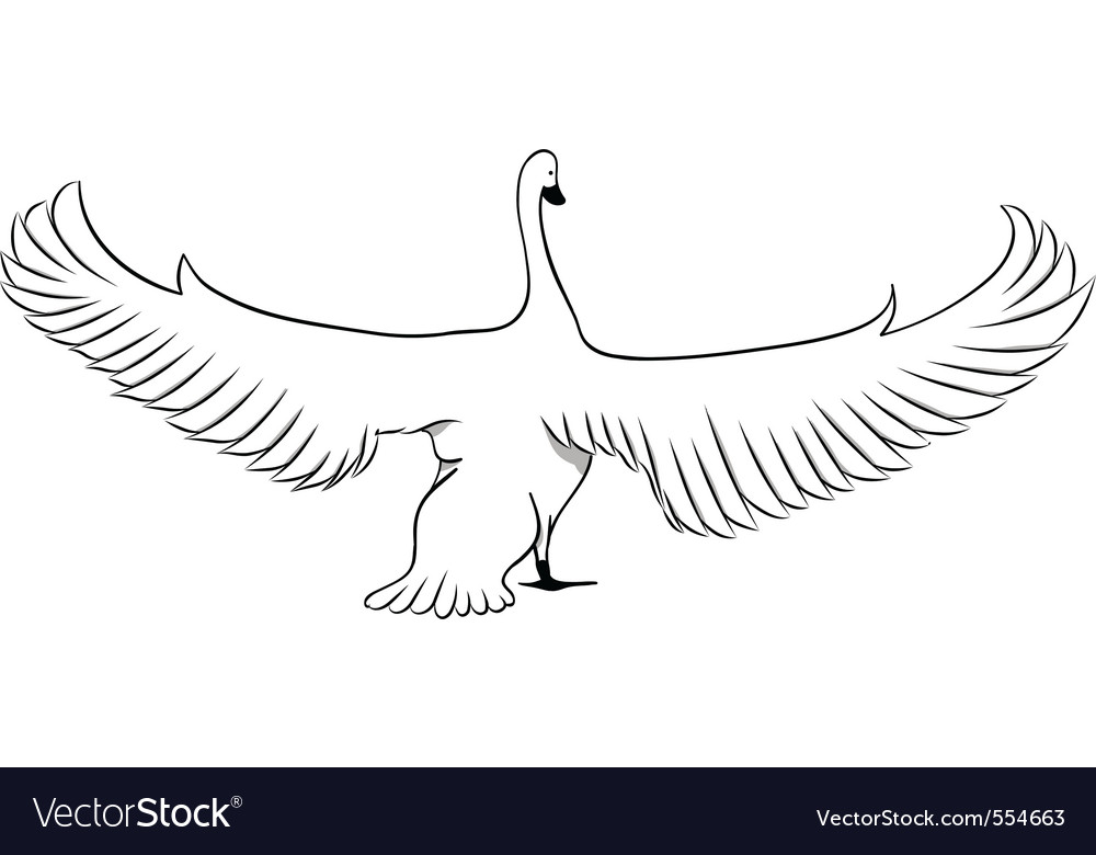 Swan isolated on the white vector | Price: 1 Credit (USD $1)