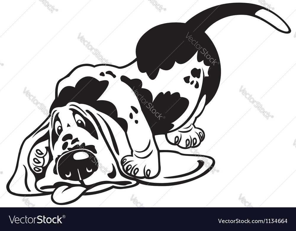 Cartoon basset hound black white vector | Price: 1 Credit (USD $1)
