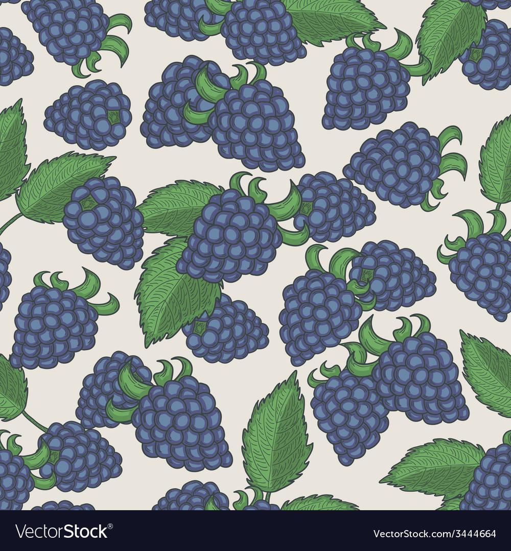 Doodle blackberries seamless pattern vector | Price: 1 Credit (USD $1)