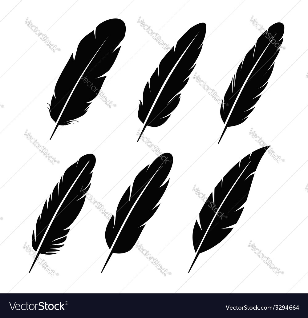 Feather icon vector
