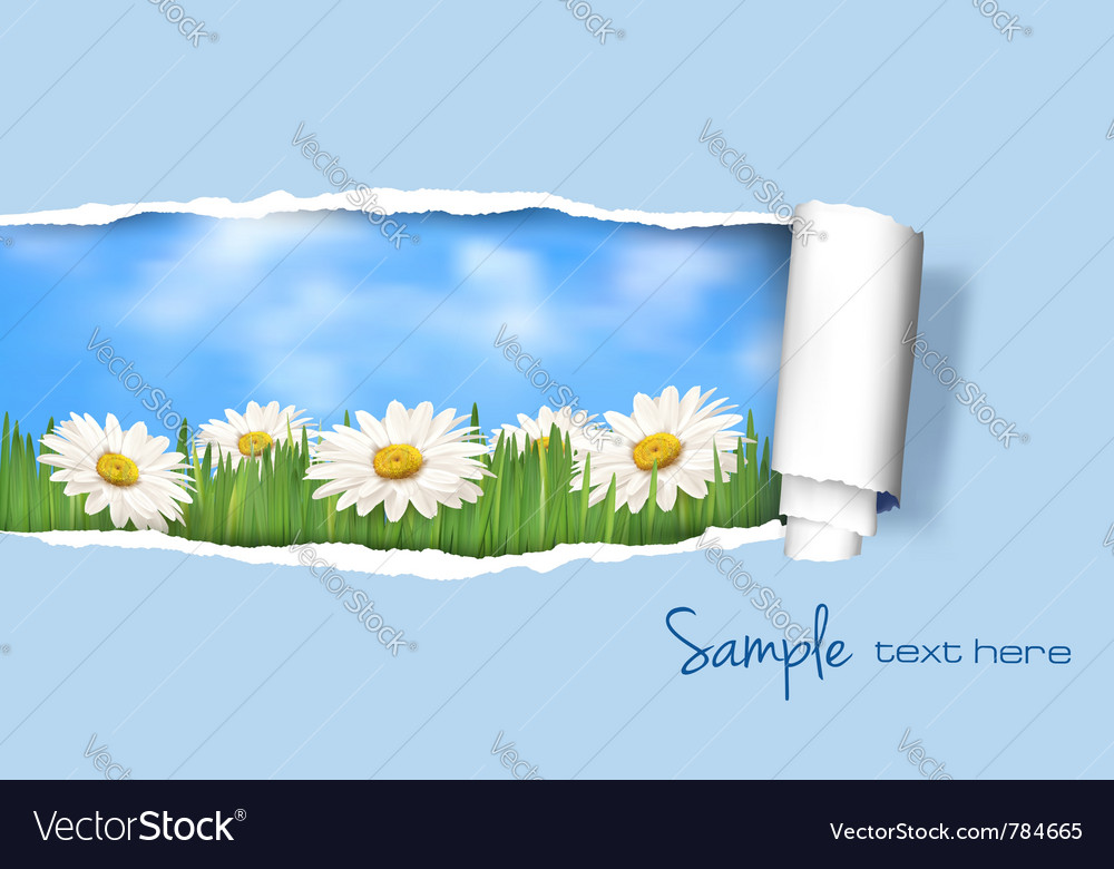 Nature floral background vector | Price: 1 Credit (USD $1)