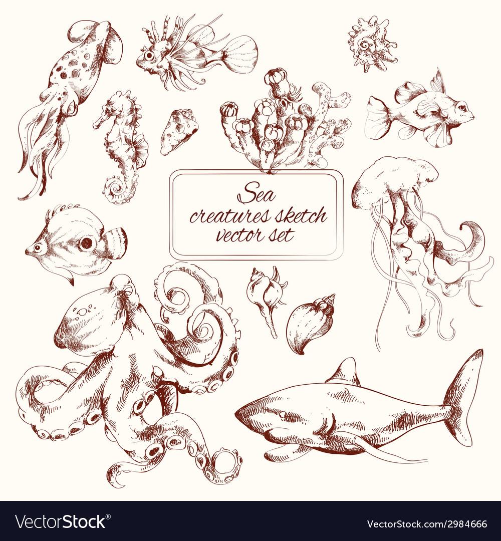 Sea creatures sketch vector | Price: 1 Credit (USD $1)