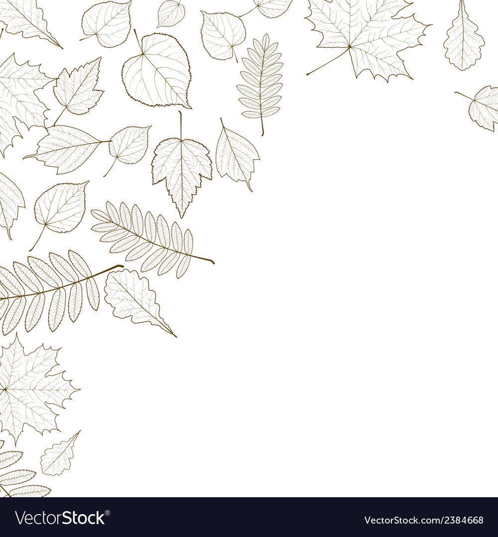 Autumn color leaves background template vector   Price: 1 Credit (USD $1)