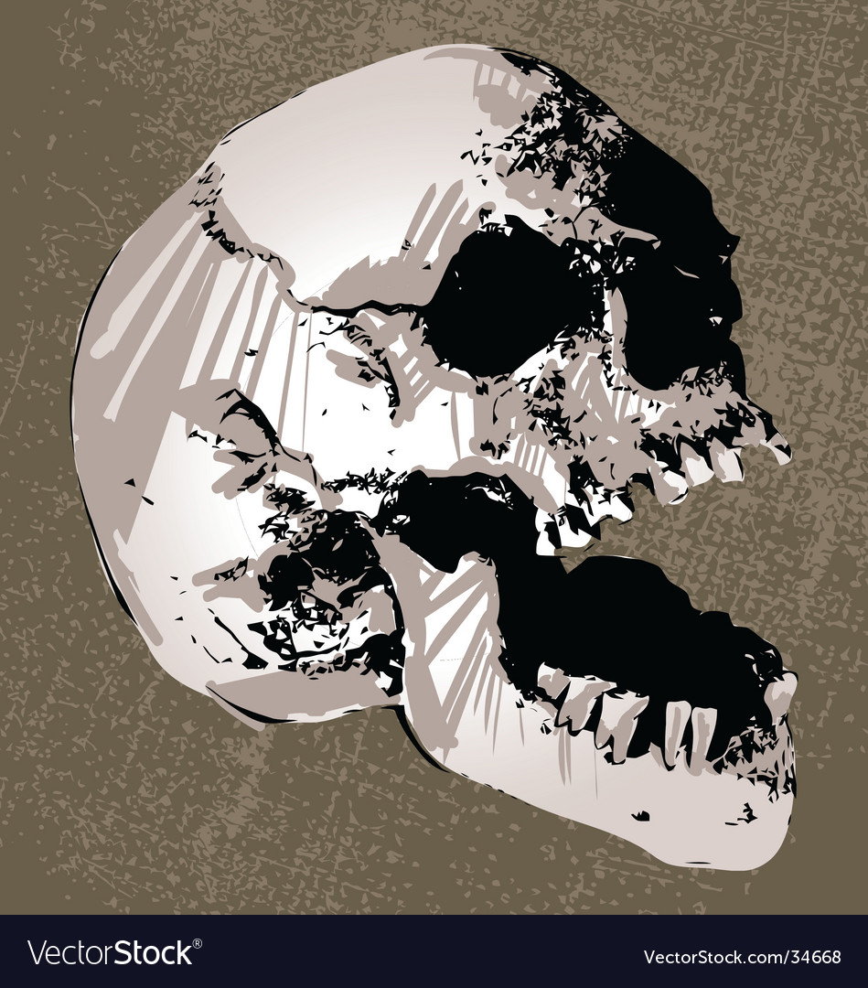 Skull head vector | Price: 1 Credit (USD $1)
