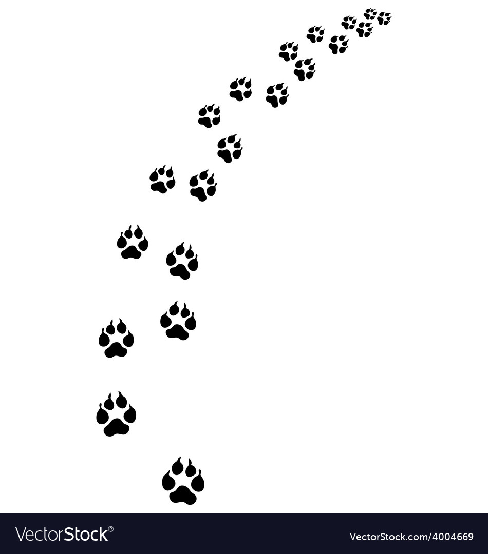 Footprints of dog vector   Price: 1 Credit (USD $1)