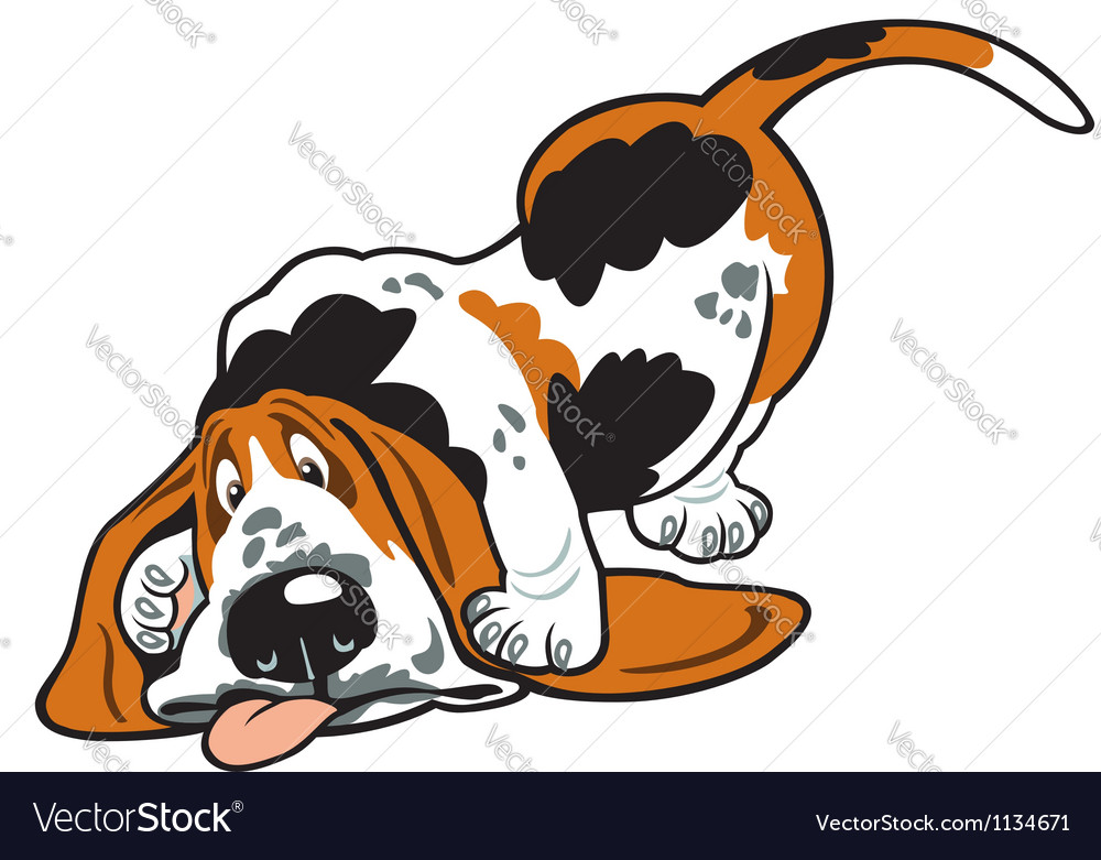 Cartoon basset hound vector | Price: 1 Credit (USD $1)