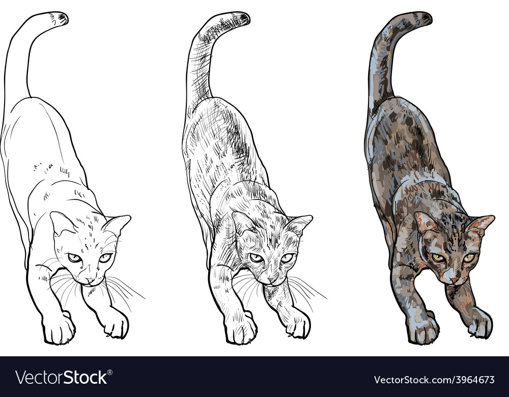 Adorable cute cat stretching body vector | Price: 1 Credit (USD $1)