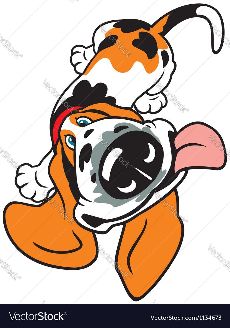 Cartoon basset vector   Price: 1 Credit (USD $1)