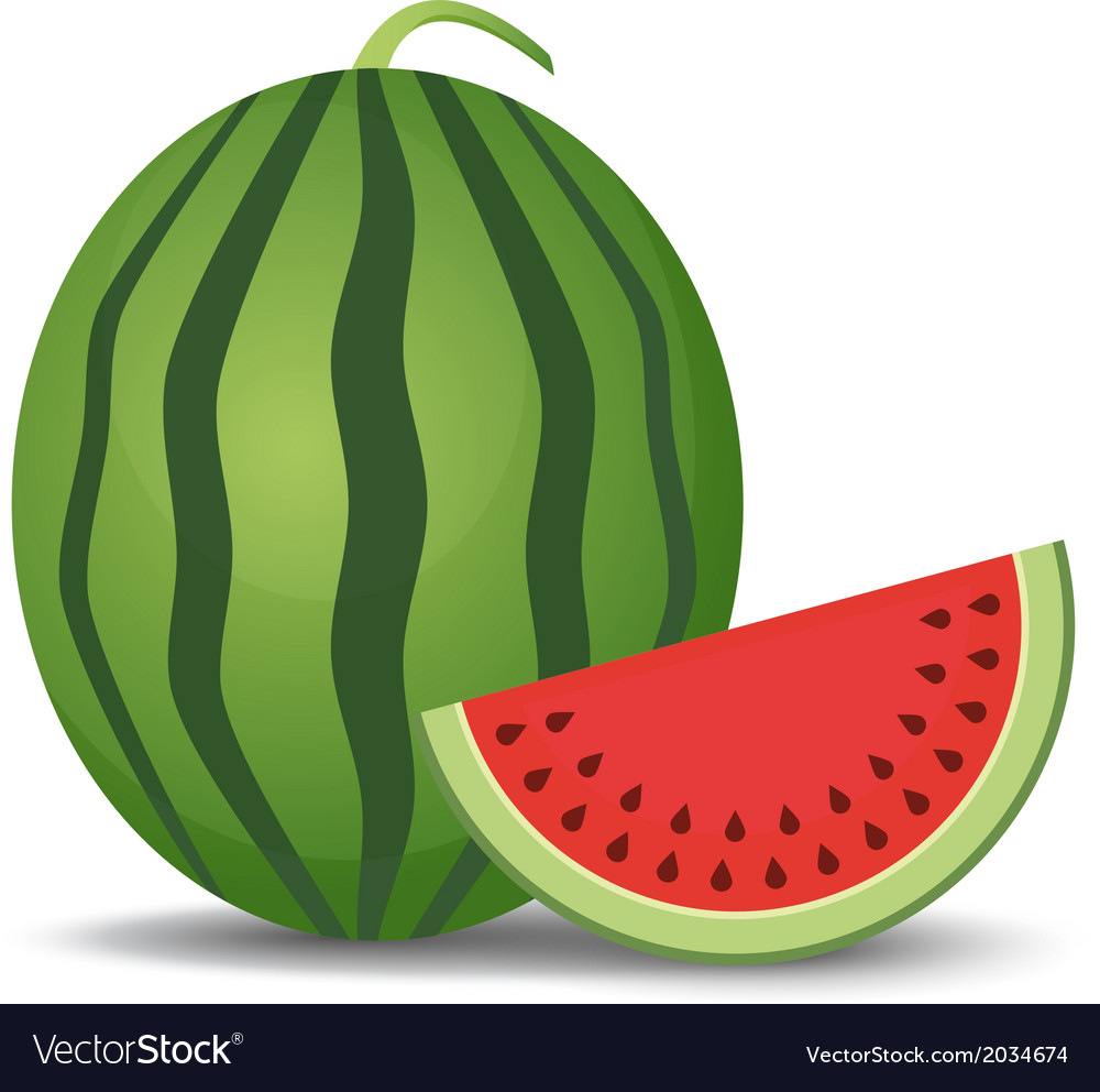 Watermelon and slice vector | Price: 1 Credit (USD $1)