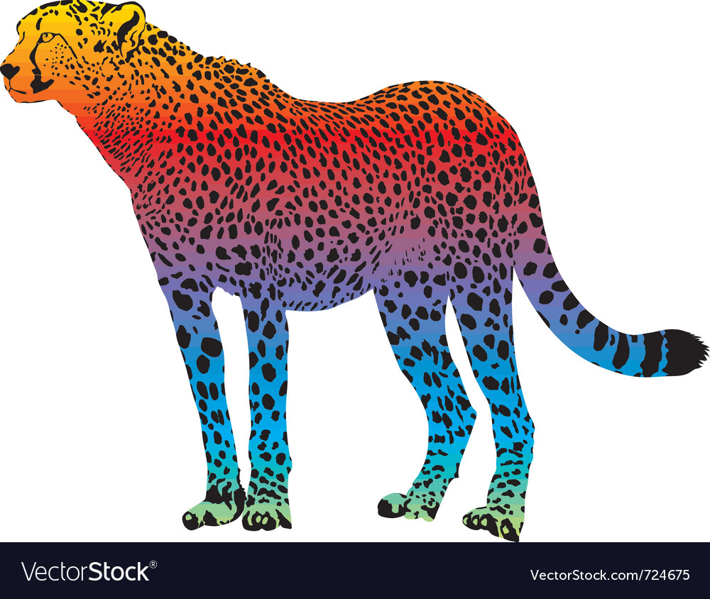 Cheetah - abstract rainbow vector | Price: 1 Credit (USD $1)