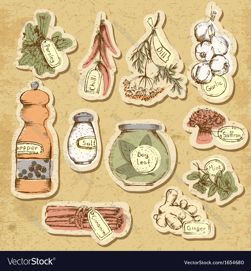 Spices and herbs vector | Price: 1 Credit (USD $1)
