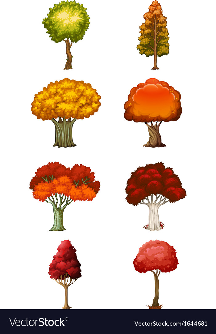 Eight different trees vector | Price: 1 Credit (USD $1)