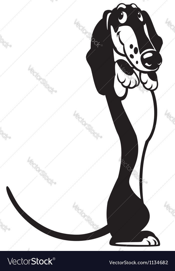 Cartoon dachshund black white vector | Price: 1 Credit (USD $1)