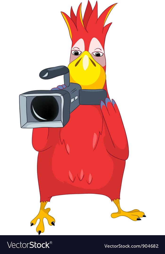 Funny parrot cameraman vector | Price: 3 Credit (USD $3)