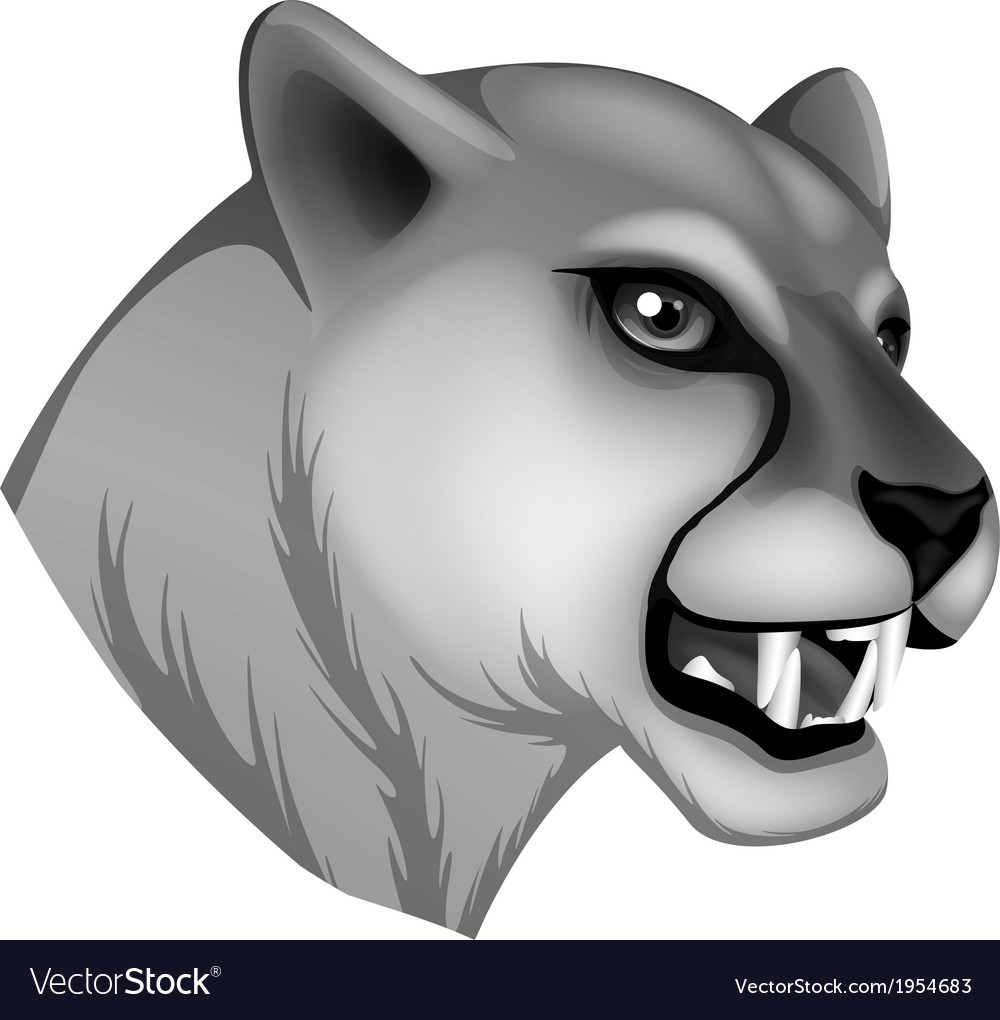 A grey panther vector | Price: 1 Credit (USD $1)