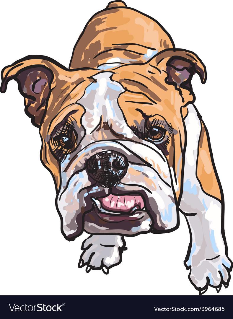 Young bulldog vector | Price: 1 Credit (USD $1)