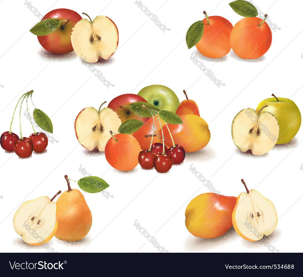 Big group of sweet fruit vector | Price: 3 Credit (USD $3)