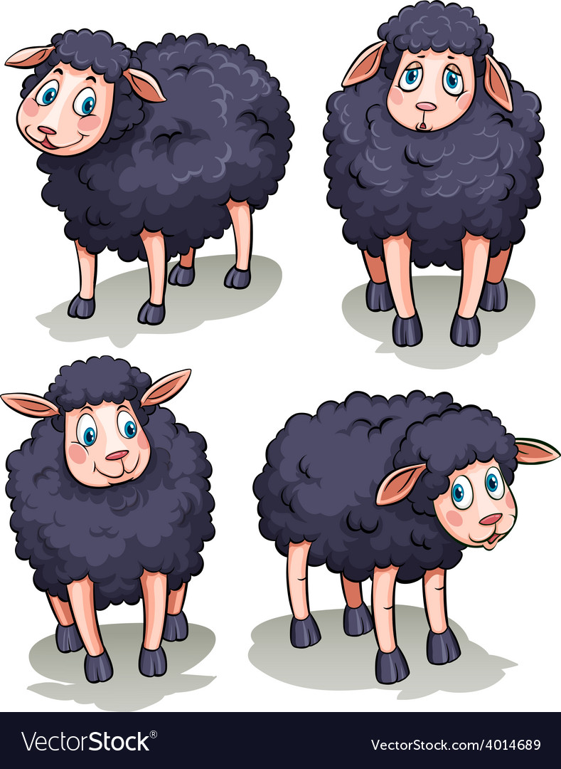 Four sheeps vector   Price: 3 Credit (USD $3)