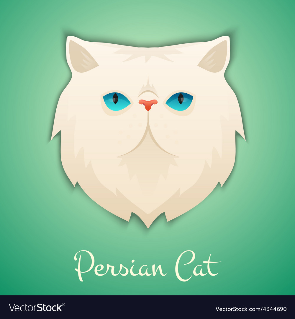 Persian cat vector | Price: 1 Credit (USD $1)