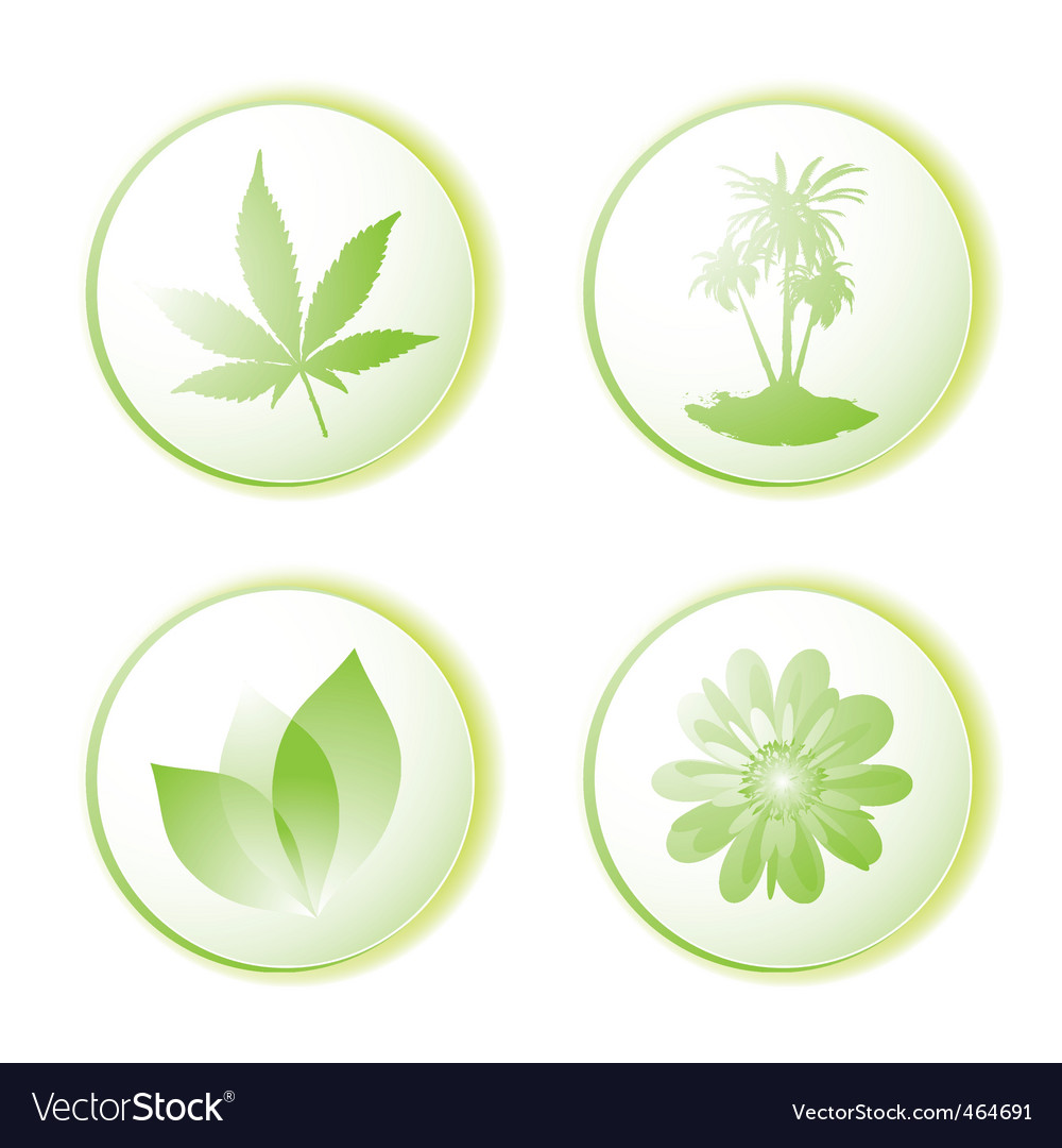 Eco icon leaf vector | Price: 1 Credit (USD $1)
