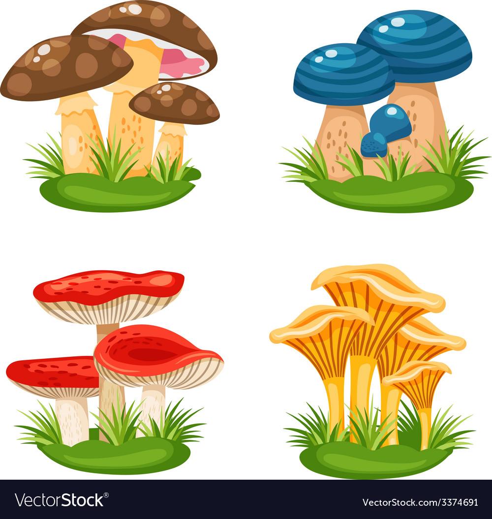 Mushrooms in grass vector   Price: 3 Credit (USD $3)