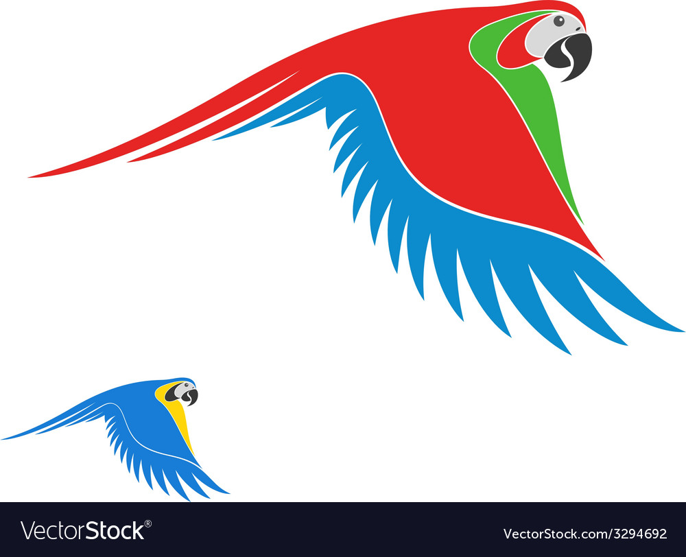 Macaw parrot vector | Price: 1 Credit (USD $1)