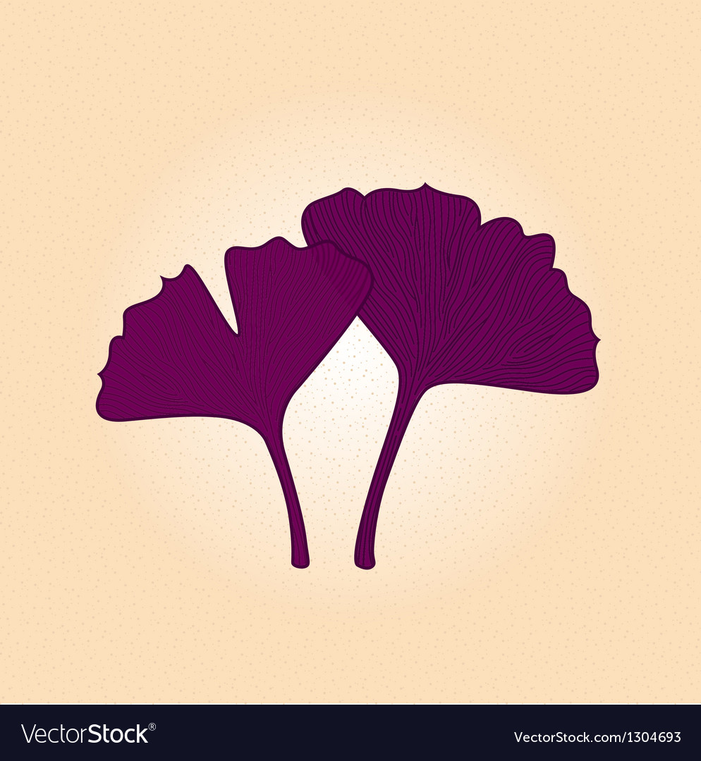 Purple gingko leaf isolated on brown background vector | Price: 1 Credit (USD $1)