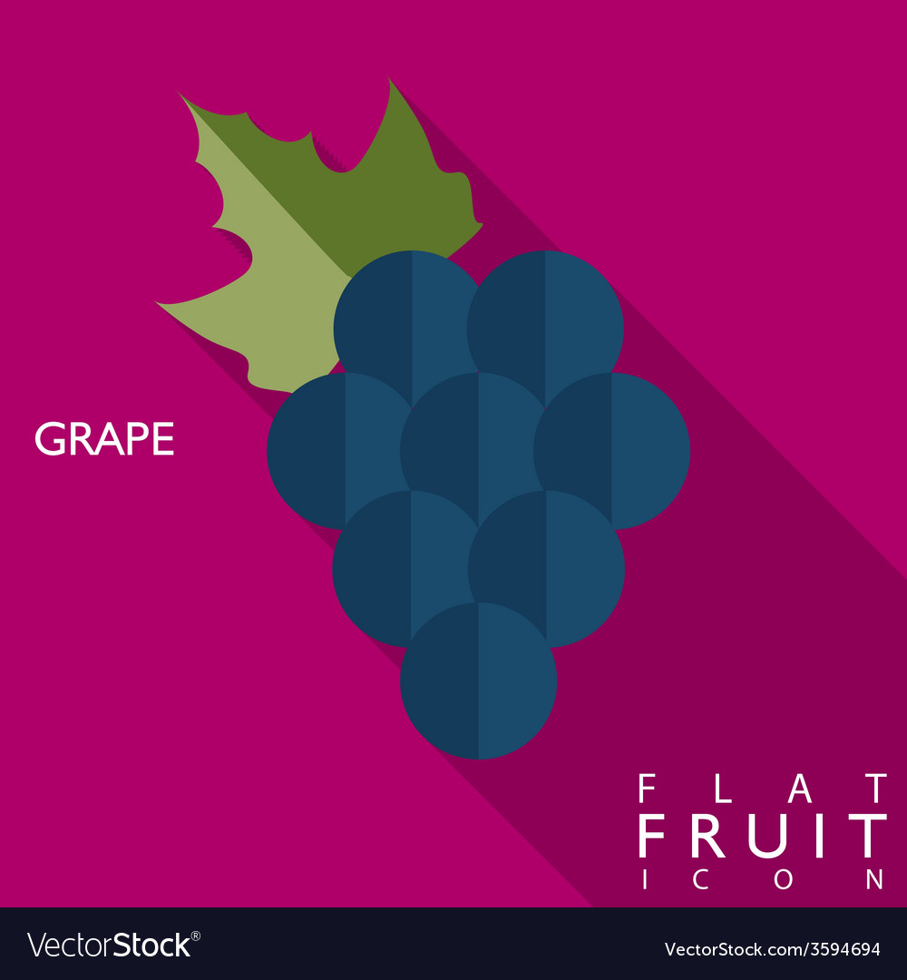 Grape flat icon with long shadow vector | Price: 1 Credit (USD $1)