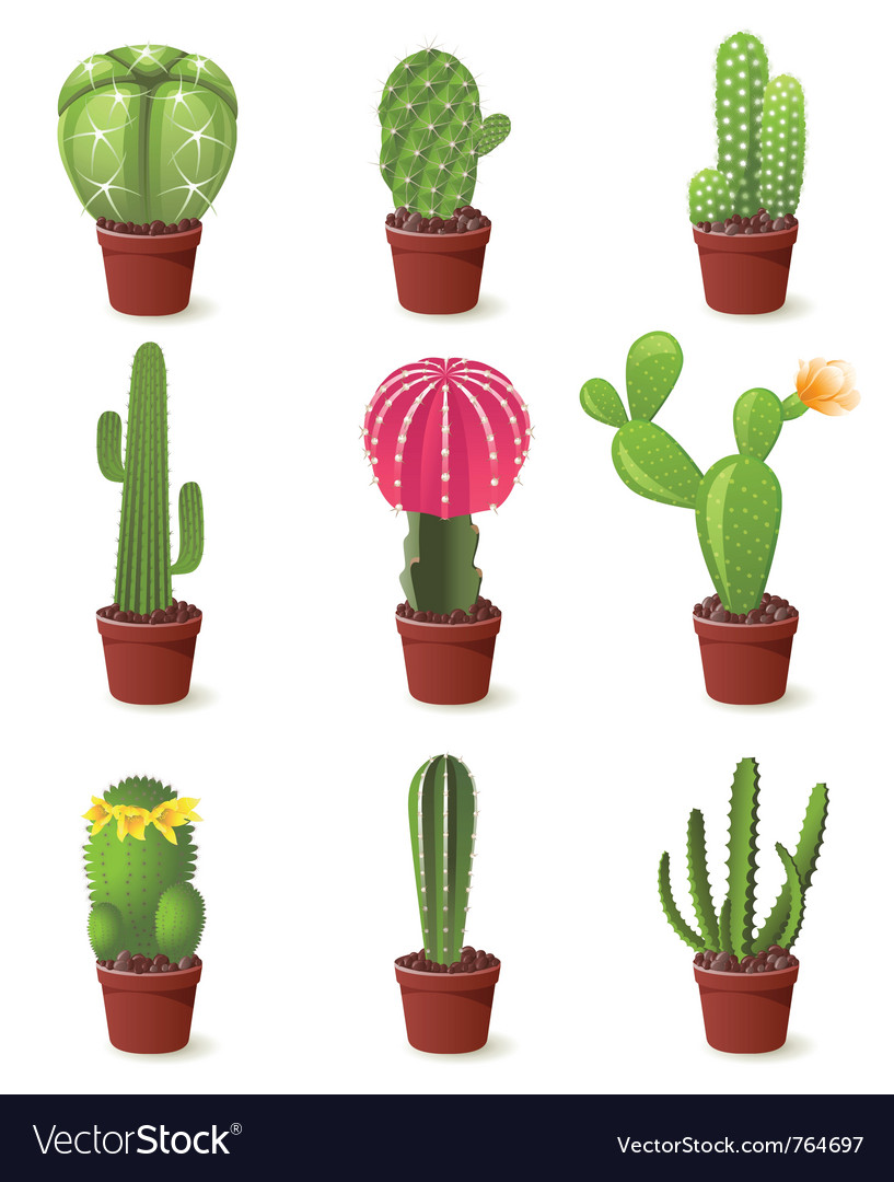 9 cactuses icons set vector | Price: 3 Credit (USD $3)