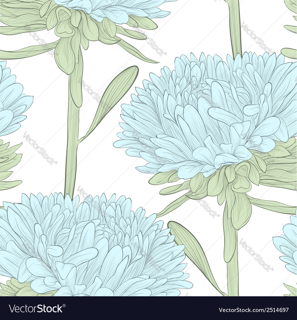 Seamless background with blue flowers aster vector | Price: 1 Credit (USD $1)