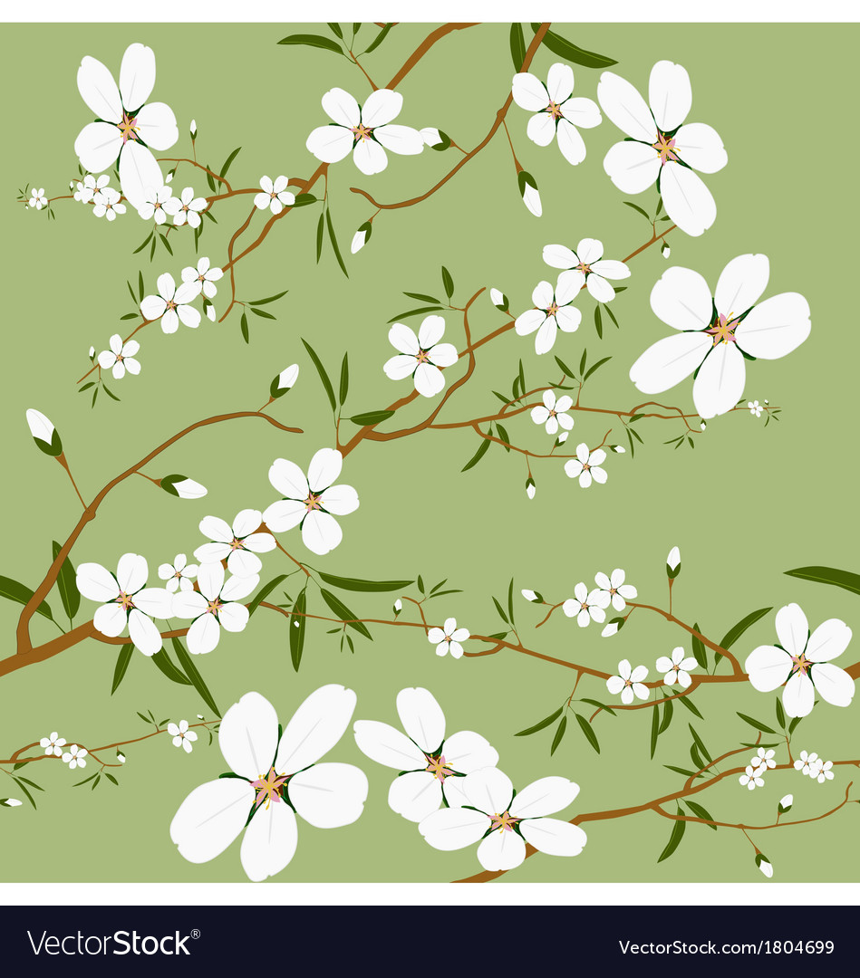 Seamless almond tree wallpaper vector | Price: 1 Credit (USD $1)