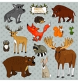 Animals owl deer fox vector