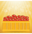 Box of tomatoes vector