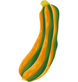 Zucchini vegetable cartoon vector