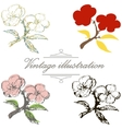 Vintage collection of hand drawn blooming vector